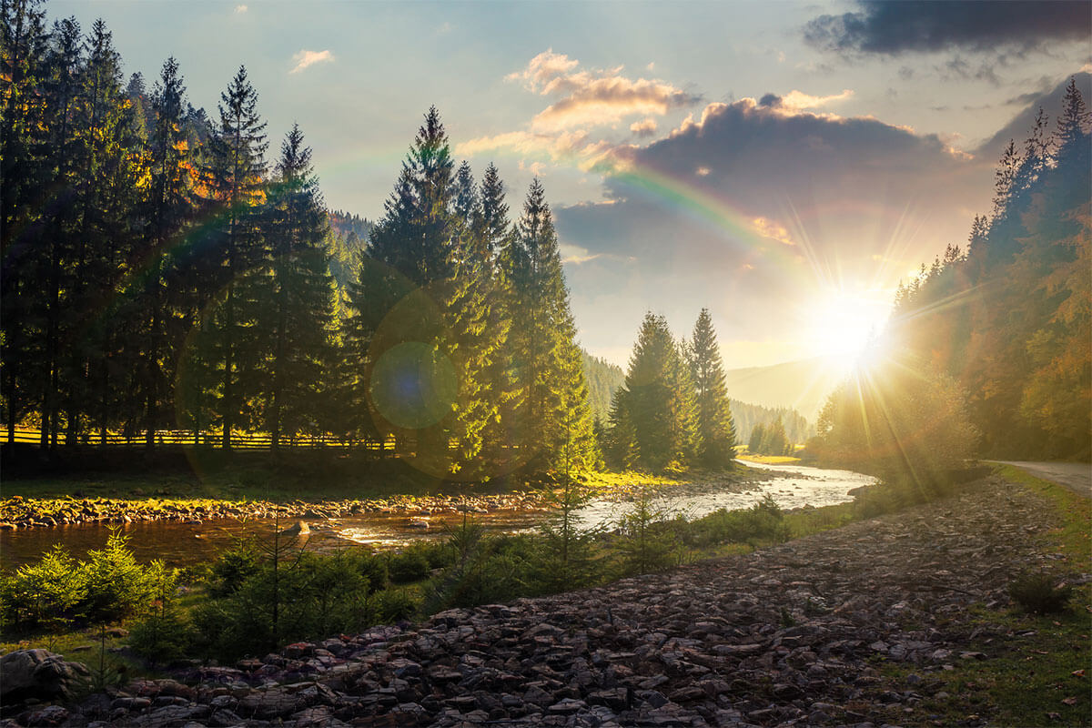 Natural Arguments for God's Existence